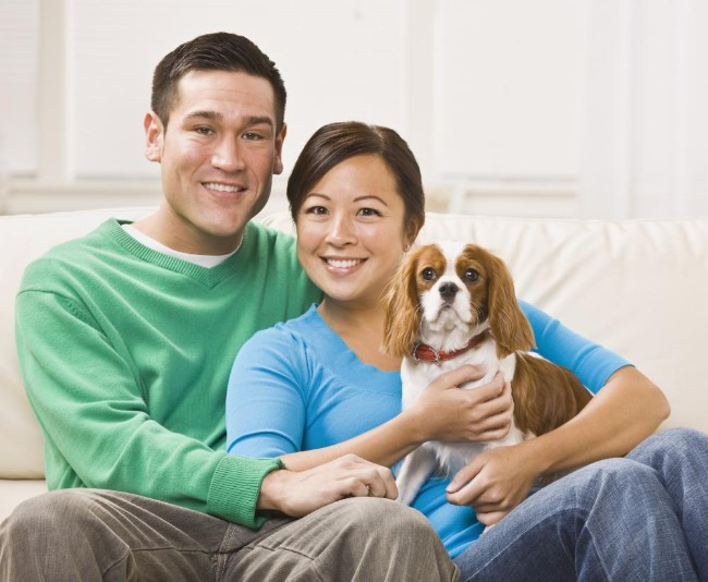happy pet dog cat skin and allergy care in Canton, GA