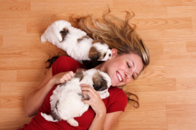 Puppy care from Canton Veterinarian